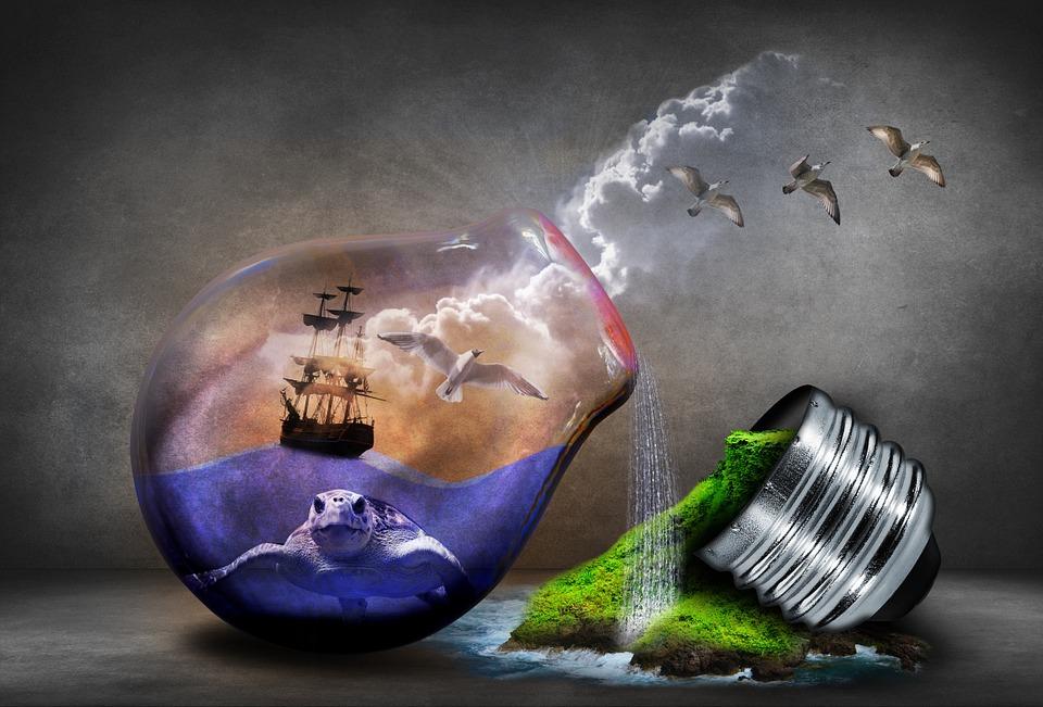 Environmental Etiquette