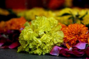India the Party Capital – Indian Festival Etiquettes